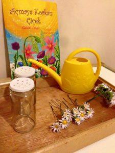 fun flower activities for preschoolers