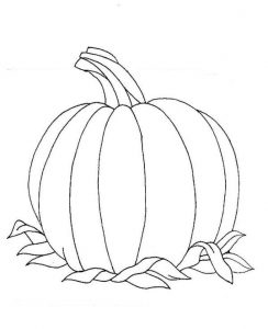 orange learning coloring pages (14)