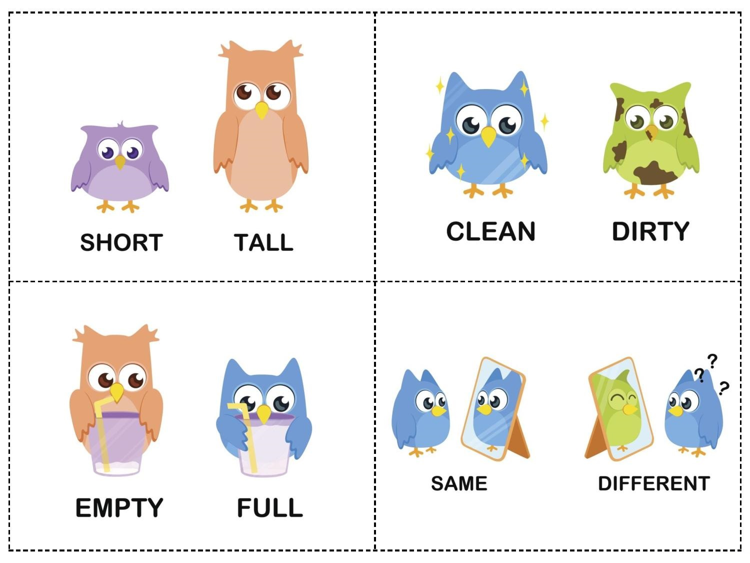 Owl Theme Opposites Cards 1 on Back To School Preschool Worksheets