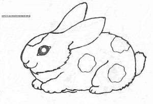 rabbit coloring pages (1)