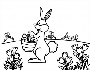 rabbit coloring pages (3)