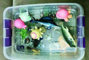 starfish sensory bin (1)