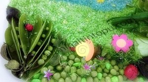 mixed beans & peas sensory tub for kids