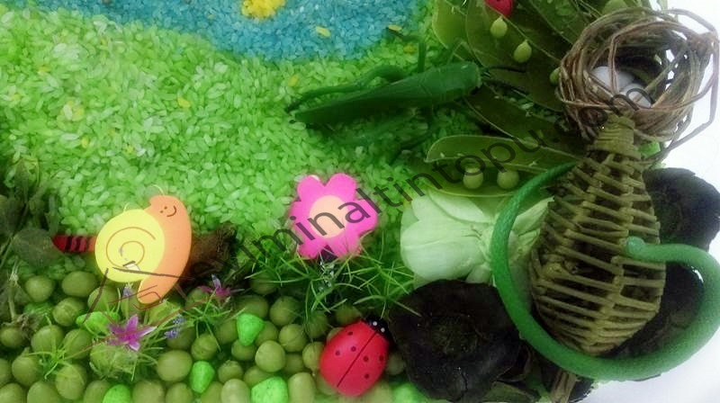 peas and carrots simple sensory bin