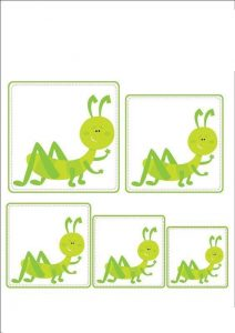 ant size sequencing