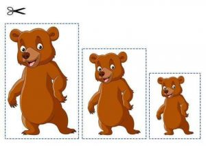 bear size sequencing