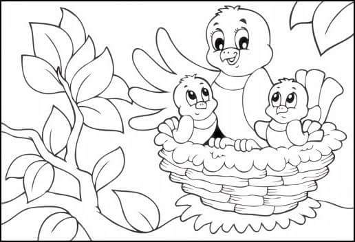 Bird nest coloring page 2 preschool and homeschool for Bird nest coloring page