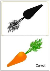 carrot shadow matching