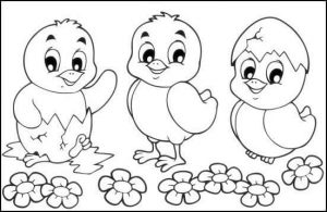 chick coloring page (2)