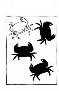 crab shadow matching