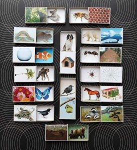 craft ideas with matchboxes