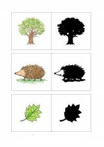 heghehog shadow match