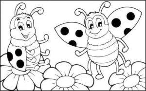 ladybug coloring page (2)