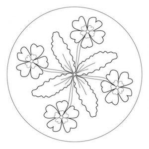mandala coloring sheet (1)