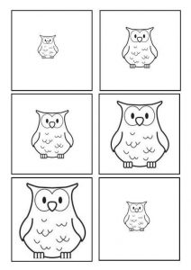owl size sequencing