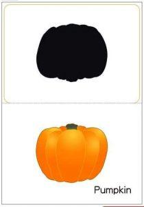 pumpkin shadow matching