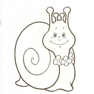 snail coloring pages (3)