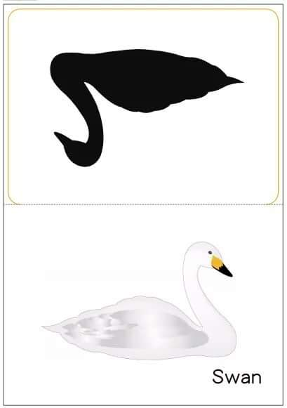 swan shadow match Preschool and Homeschool