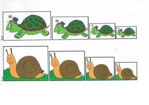 turtle and snail size sequencing