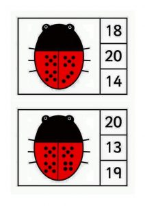 ladybug-counting