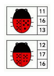 ladybug-counting1