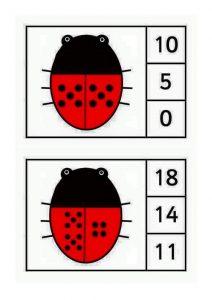 ladybug-counting3