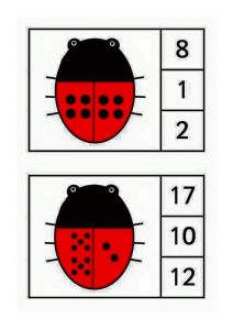 ladybug-counting5