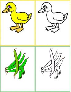 colour cards for toddlers (18)