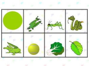 colour cards for toddlers (7)