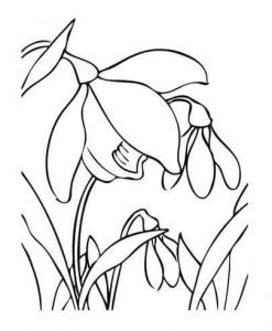 flowers-coloring-page-for-kids-10