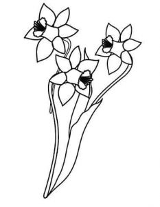 flowers-coloring-page-for-kids-13