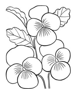 flowers-coloring-page-for-kids-6