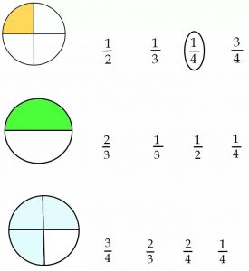 free fraction worksheet (5)