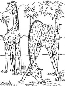 kids-giraffe-coloring-4