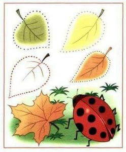 ladybug-tracing-sheet