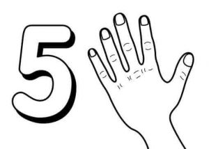 number-five-flashcads