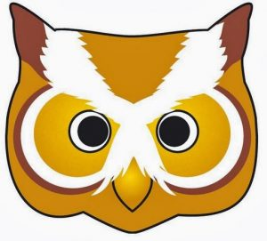 owl-mask-template