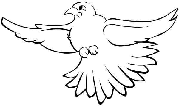 84 Bird Coloring Pages For Preschoolers