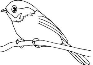 preschool-bird-coloring-pages-12