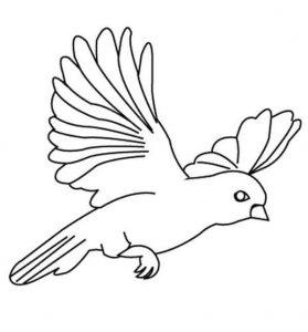 preschool-bird-coloring-pages-14