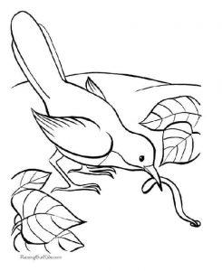 preschool-bird-coloring-pages-16