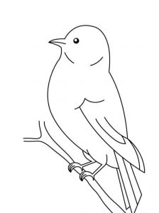 preschool-bird-coloring-pages-6