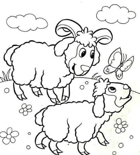 sheep and baby coloring page 2 preschool and homeschool. Black Bedroom Furniture Sets. Home Design Ideas