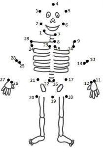 skeleton dot to dot sheet