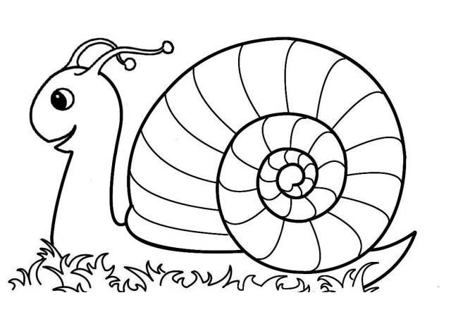 snail coloring pages 1 funnycrafts