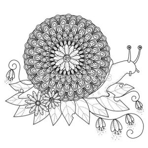 snail coloring pages (4)