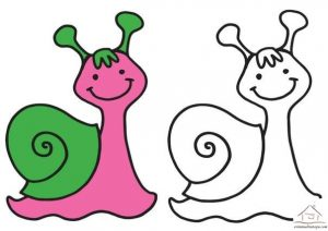 snail coloring pages (7)