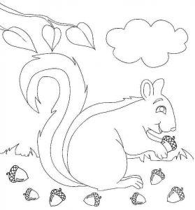 squirrel-autumn-coloring-2