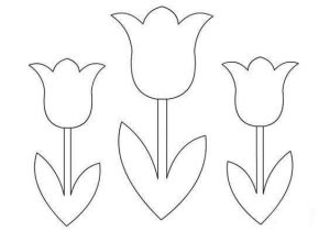 Flowers Coloring Pages Funnycrafts Tulip Coloring Pages