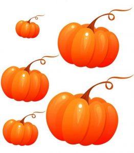 autumn-size-ordering-1